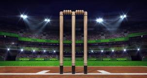 Escena del estadio del grillo de la noche con brillo móvil del proyector y el primer de madera de los wicketes