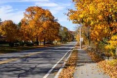 Escena del follaje de otoño de Nueva Inglaterra Fotografía de archivo