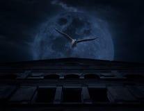 Escena del horror de la mosca del pájaro con el castillo viejo del grunge sobre la luna y el cl Imágenes de archivo libres de regalías