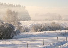 Escena del invierno Imagen de archivo libre de regalías