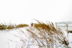 Escena del invierno fotos de archivo
