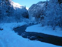 Escena del invierno fotos de archivo libres de regalías