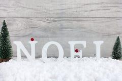 Escena del invierno con los árboles de navidad y Noel en letras Imagen de archivo