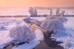 Escena del invierno de la mañana imagenes de archivo