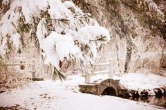 Escena del invierno del vintage Fotografía de archivo