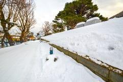 Escena del invierno en el parque de Motomachi, soporte Hakodate, Hokkaido, Japón Imagen de archivo libre de regalías