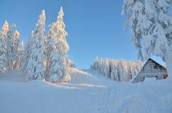 Escena del invierno en la montaña Fotografía de archivo