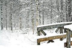 Escena del invierno Nevado con un puente de madera Fotografía de archivo libre de regalías