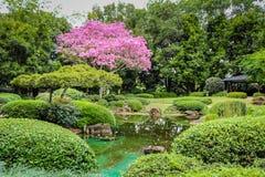 Escena del jardín Imágenes de archivo libres de regalías