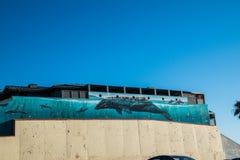 Escena del océano pintada en el lado de un edificio que muestra una ballena grande y delfínes debajo del agua en el océano fotos de archivo libres de regalías