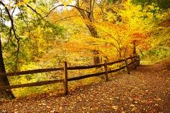 Escena del otoño fotos de archivo