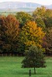 Escena del otoño, castillo Cumbria de Sizergh imagen de archivo