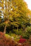 Escena del otoño, castillo Cumbria de Sizergh foto de archivo libre de regalías