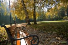 Escena del otoño en parque Fotos de archivo libres de regalías