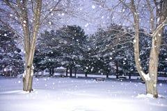 Escena del país de las maravillas del invierno Imágenes de archivo libres de regalías