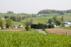 Escena del país de Ohio Amish Imágenes de archivo libres de regalías