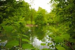 Escena del paisaje del Central Park Imágenes de archivo libres de regalías