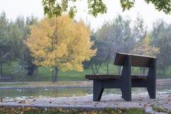 Escena del parque Foto de archivo libre de regalías