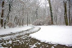 Escena del parque del invierno fotografía de archivo libre de regalías