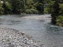 Escena del río de Tongariro en Nueva Zelanda Foto de archivo libre de regalías