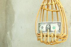 Escena del recogedor y del billete de banco de la fruta Foto de archivo libre de regalías
