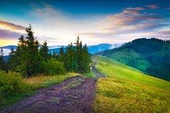 Escena del verano de la madrugada en las montañas cárpatas Foto de archivo libre de regalías