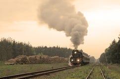 Escena en el ferrocarril Imágenes de archivo libres de regalías