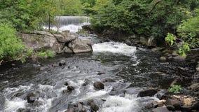 Escena en el río de Yamaska almacen de metraje de vídeo