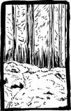 Escena escénica del desierto del bosque ilustración del vector