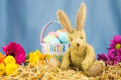 Escena feliz linda del día de Pascua con el conejo Copie el espacio Fotos de archivo
