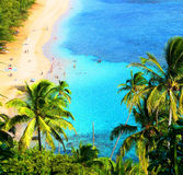 Escena hawaiana de la playa Fotografía de archivo libre de regalías
