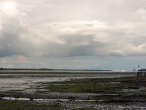 Escena hermosa del estuario fuera de la marea de tierra de la corriente hacia fuera Imágenes de archivo libres de regalías