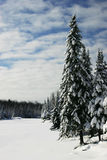 Escena hermosa del invierno por un lago congelado Fotos de archivo libres de regalías
