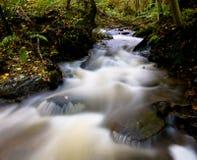 Escena hermosa del río Foto de archivo