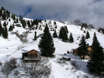 Escena hermosa en el paso de San Pellegrino en las dolomías en Val di Fiemme, Trento del invierno Fotografía de archivo