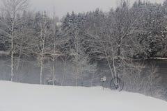 Escena hivernal Fotos de archivo libres de regalías