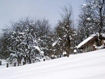 Escena idílica del invierno, Croacia Fotografía de archivo libre de regalías