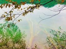Escena impresionante del lago Plitvice, parque nacional de Croacia Enumerado en patrimonio mundial de la UNESCO Fotografía de archivo libre de regalías