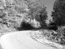 Escena infrarroja Foto de archivo libre de regalías
