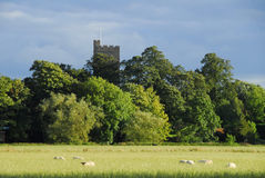 Escena inglesa de la aldea Fotos de archivo
