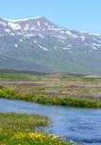 Escena islandesa de la montaña Fotografía de archivo libre de regalías