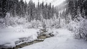 Escena Nevado fotos de archivo