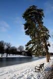 Escena pacífica del invierno Fotos de archivo libres de regalías