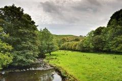 Escena pacífica del río en Kentmere Foto de archivo