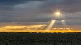 Escena pintoresca del parque nacional de Etosha sobre puesta del sol fotografía de archivo libre de regalías