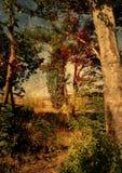 Escena pintoresca granulosa de la naturaleza Fotos de archivo