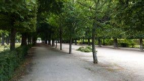 Escena por dentro de jardines del palacio de Schönbrunn fotografía de archivo