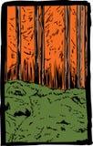 Escena rugosa del rastro del bosque del otoño ilustración del vector