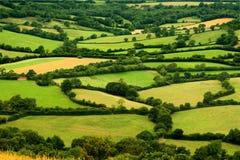 Escena rural Imagenes de archivo