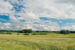 Escena rural Imágenes de archivo libres de regalías